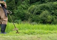 太陽光発電施設の草刈りは必要?太陽光発電施設の雑草対策